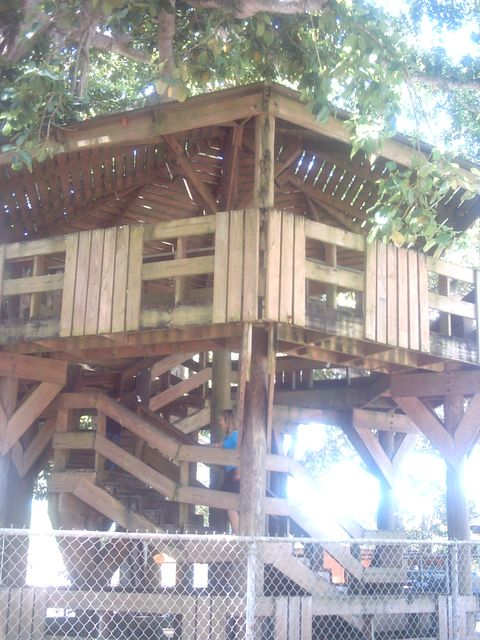aguadilla tree house by beach